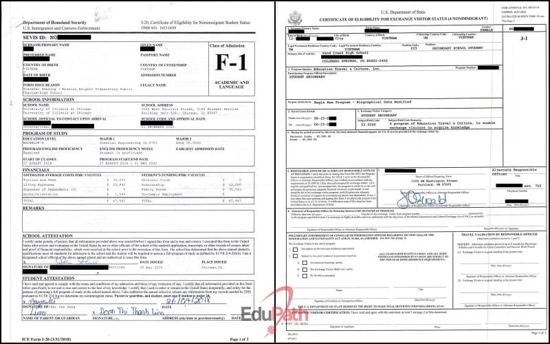 Mẫu đơn I 20 cho visa F1 và DS 2019 cho visa J1