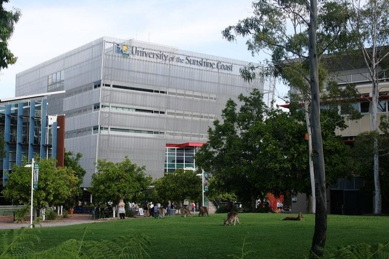 khuôn-viên-University-of-the-Sunshine-Coast-Du-học-Edupath