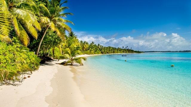 Một trong những bờ biển đẹp nhất nước Úc - EduPath